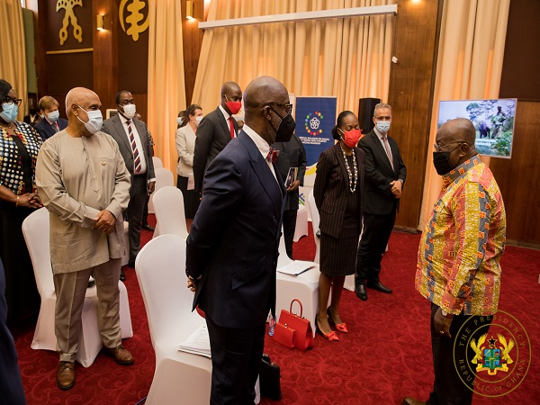 Akufo-Addo and global CEOs